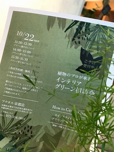 10月22日(Sun.)インテリアグリーンの相談会開催します。